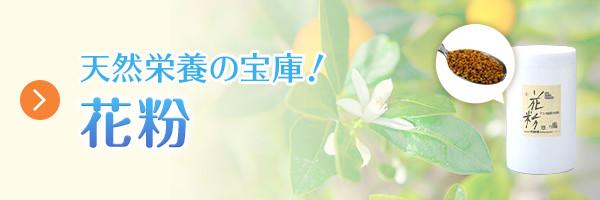 天然栄養の宝庫! 花粉